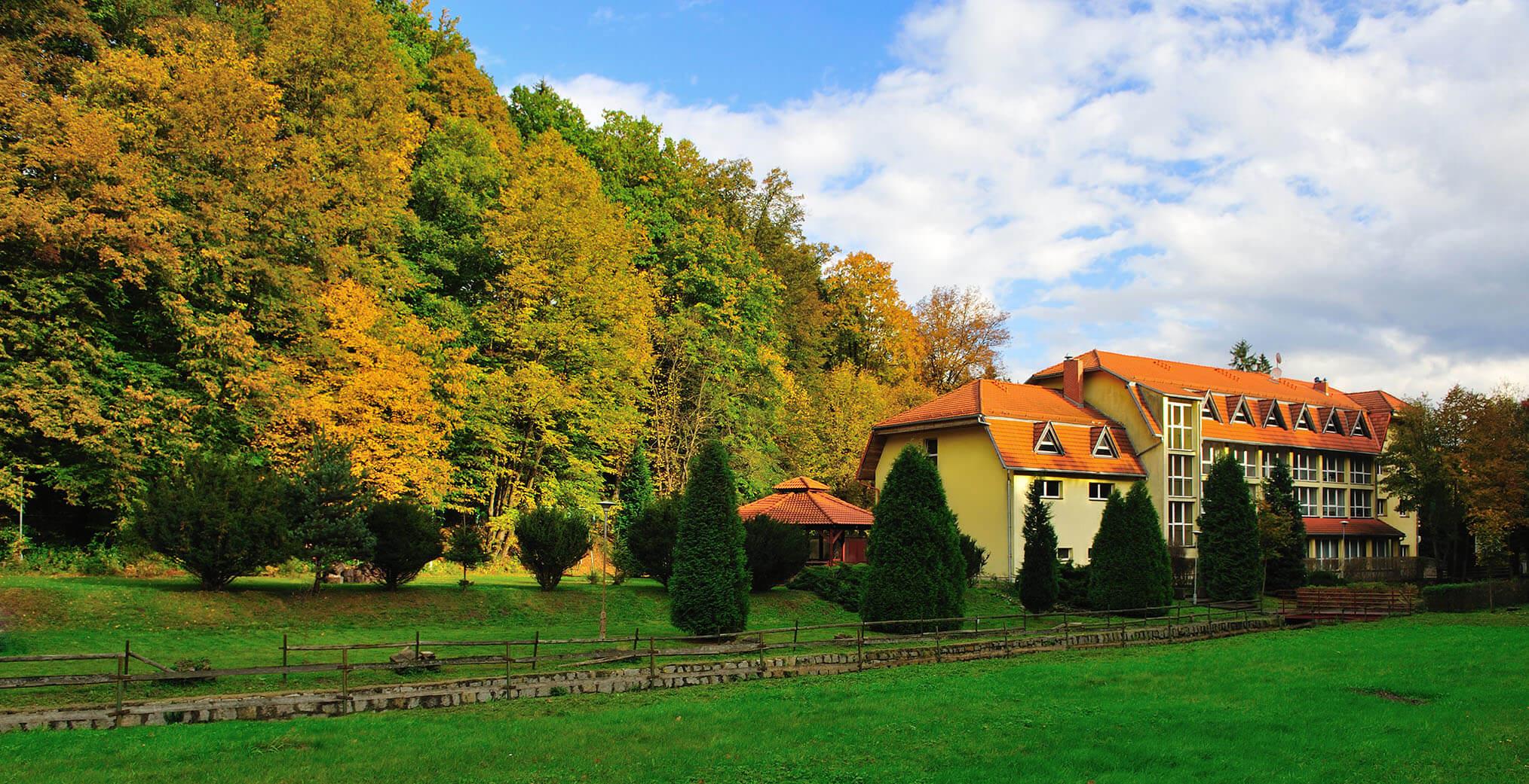 hotel złoty las